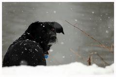 Griechin im Schnee