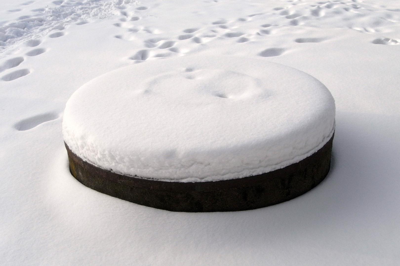 Grill mit Schneehaube
