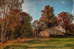 Grillenburg -Tharandter Wald