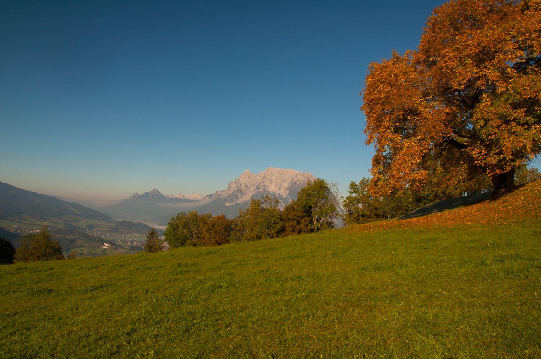 Grimming Herbst