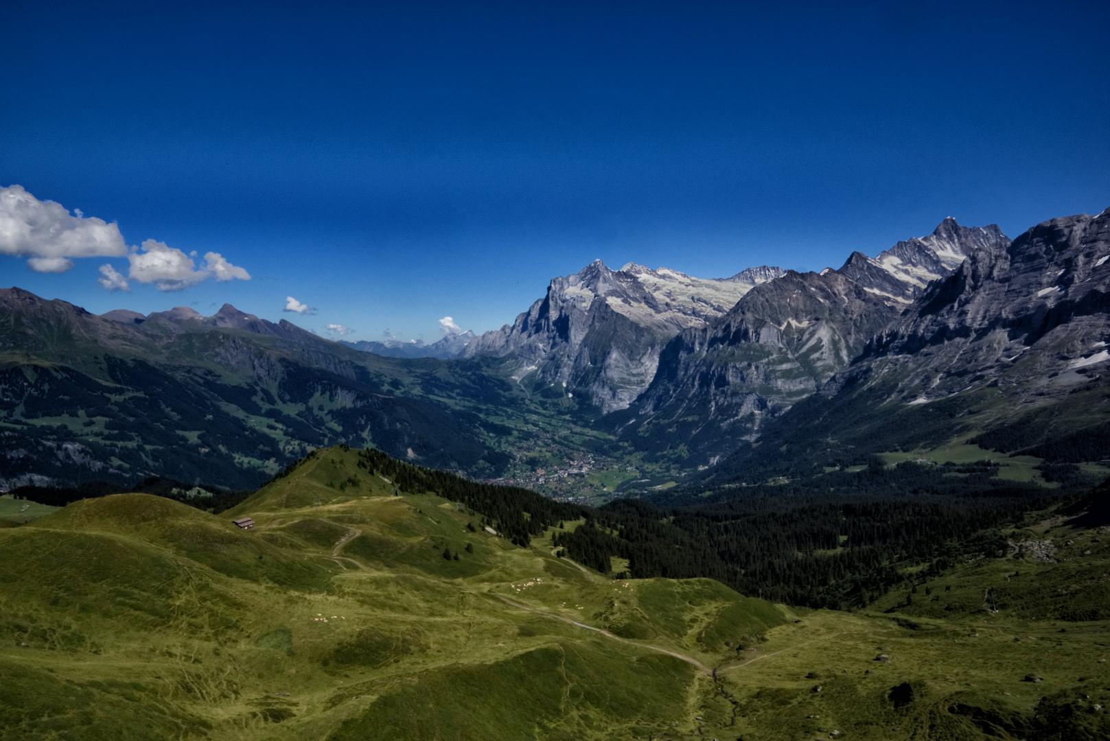 Grindelwald_