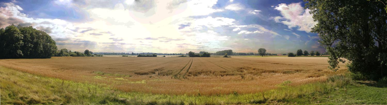 Gröbenzell Panorama Getreidefelder