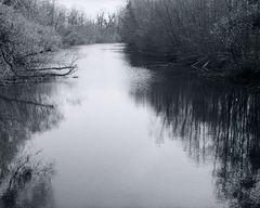 Groschenwasser  Frühling