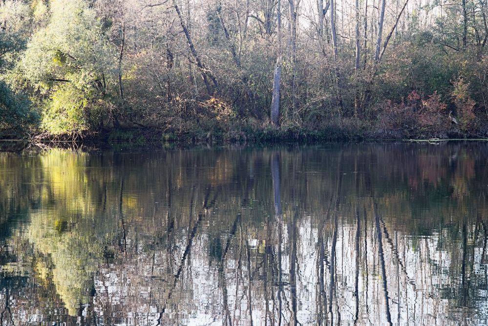 Groschenwasser November IV