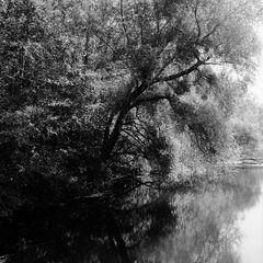 Groschenwasser September