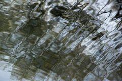 Groschenwasser Spiegelung
