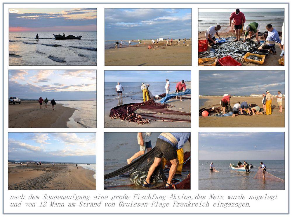 große Fischfang -Aktion-