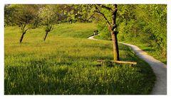 Große Landschaften mit kleinen Leuten #3: Weg