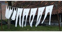 Große Wäsche im Männerhaushalt