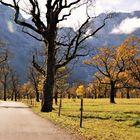 Großer Ahornboden Oberbayern Alemania