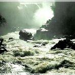 Großes, lebendiges Wasser - Iguacu