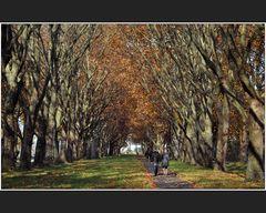 Grossstadt-Herbst