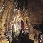 Grotta Pod lanisce (Udine)