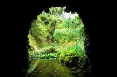 Grotte im Park Terra Nostra - Furnas - Sao Miguel (Azoren)