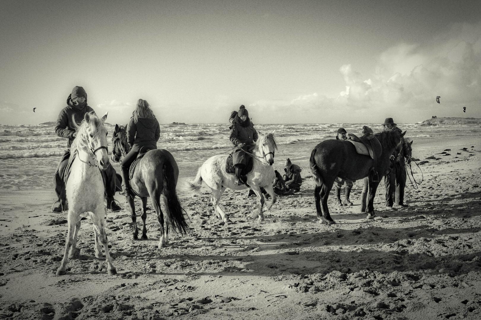 Groupe de cavaliers sur la plage d'Erdeven l'hiver