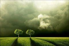 .grün