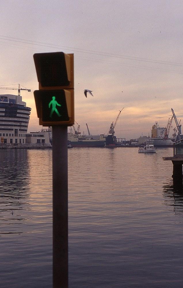 Grün am Hafen