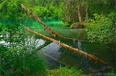 Grün, Grüner, Crestasee