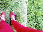 grün - rot