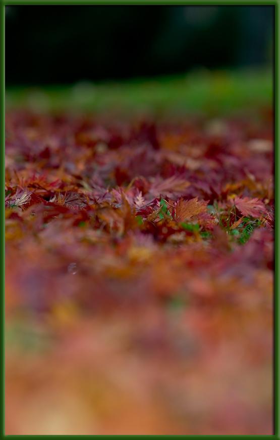 Grün-Rot-Orange