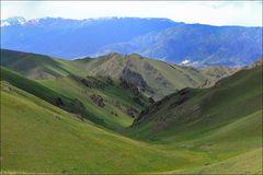 Grüne Berghänge