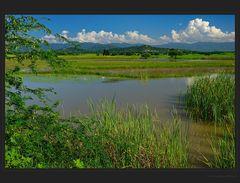 Grüne Burmesische Landschaften