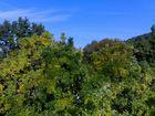 Grüne Idylle nahe den Wolken...