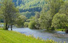 Grüne Landschaft im Wiesental