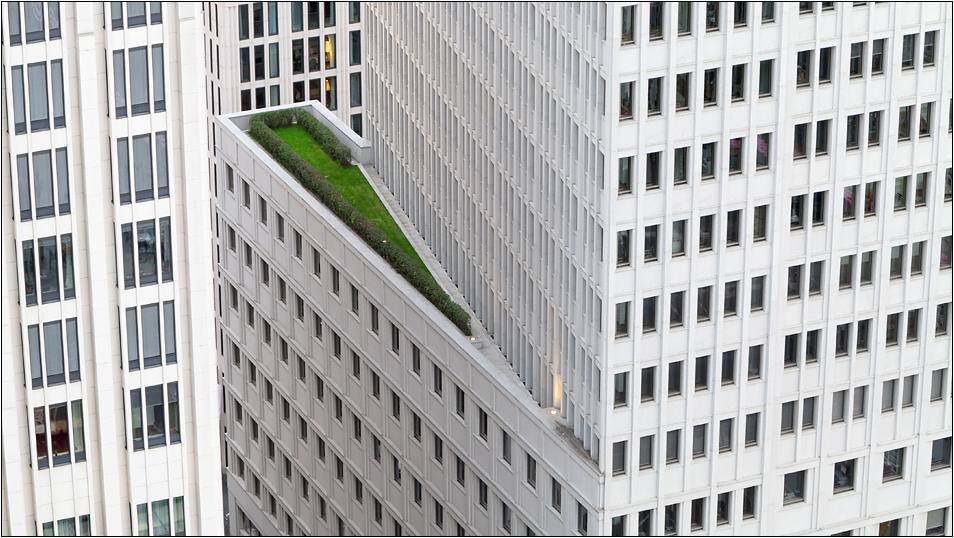 Grüne Lunge