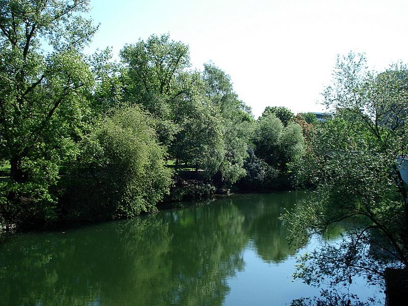 Grüne Oase/Green Oasis