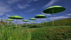 Grüne Schirme und blauer Himmel