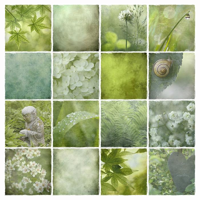 Grüne Stille