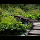 Grüne Wege, grüne Stege