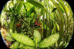 Grüner Hotel-Dschungel