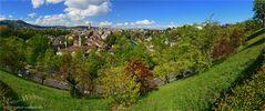 Grünes Bern