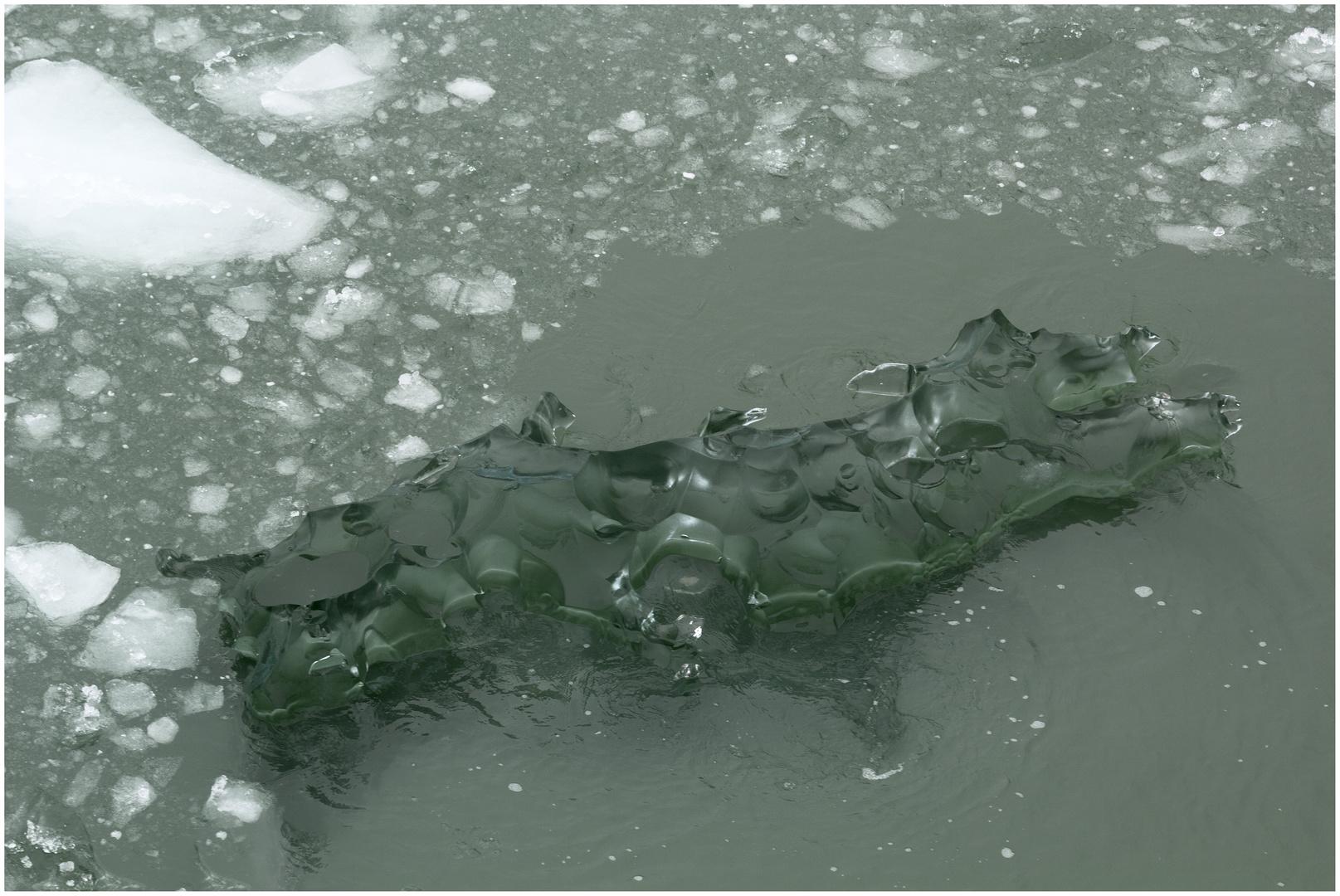 Grünes Eisberg-Schweinchen
