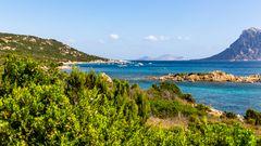 Grünes Sardinien