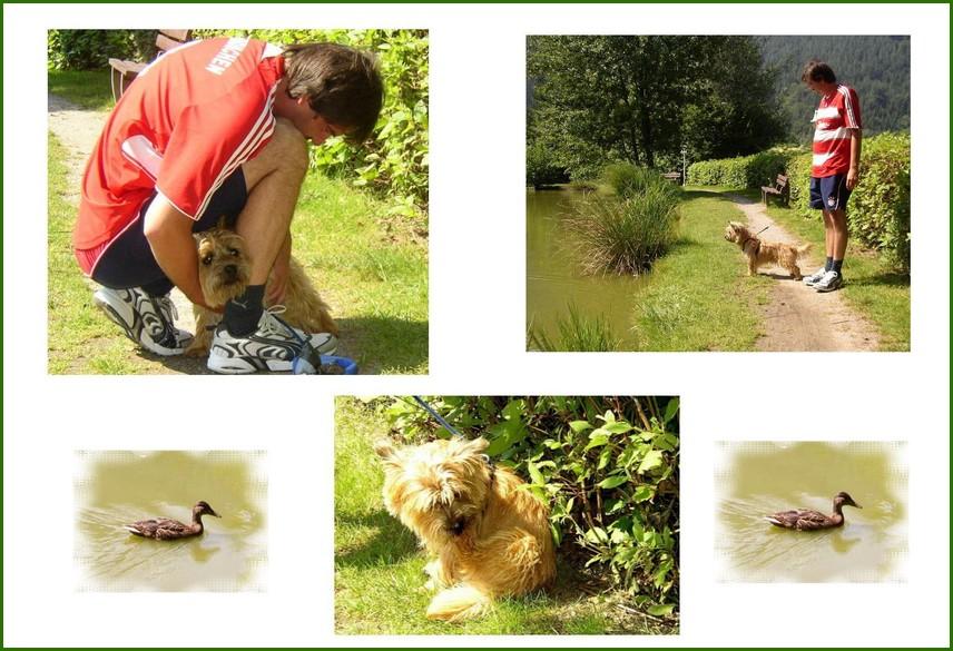 Grüße an den Campingurlauber mit seinem kleinen Hundchen.