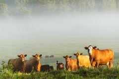 Gruppenbild in der Morgensonne