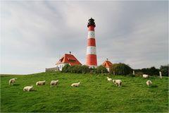 Gruppenbild mit Leuchtturm