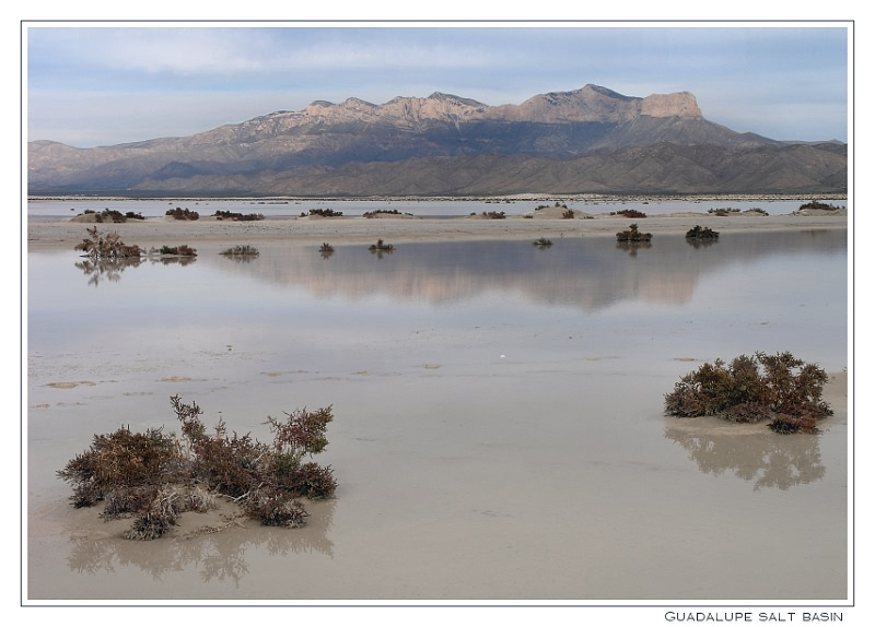 Guadalupe Salt Basin