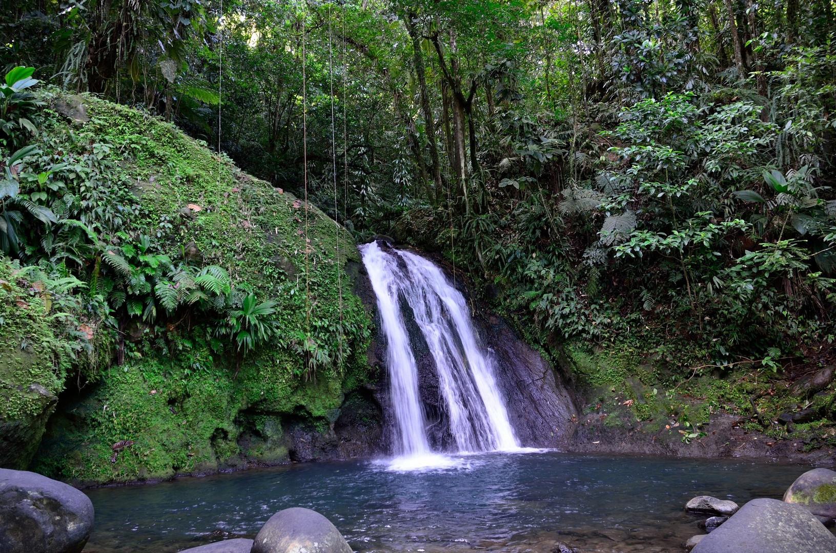 Guadeloupe - Cascade aux ecrevisses