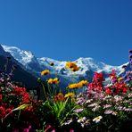guardando il Monte Bianco .....