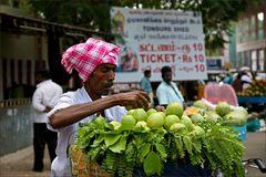 Guavenverkäufer