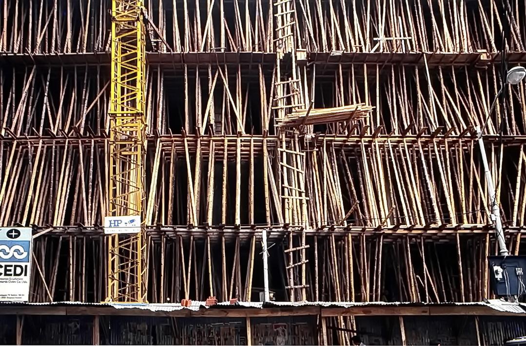 Guayaquil: Bauen mit Bambus