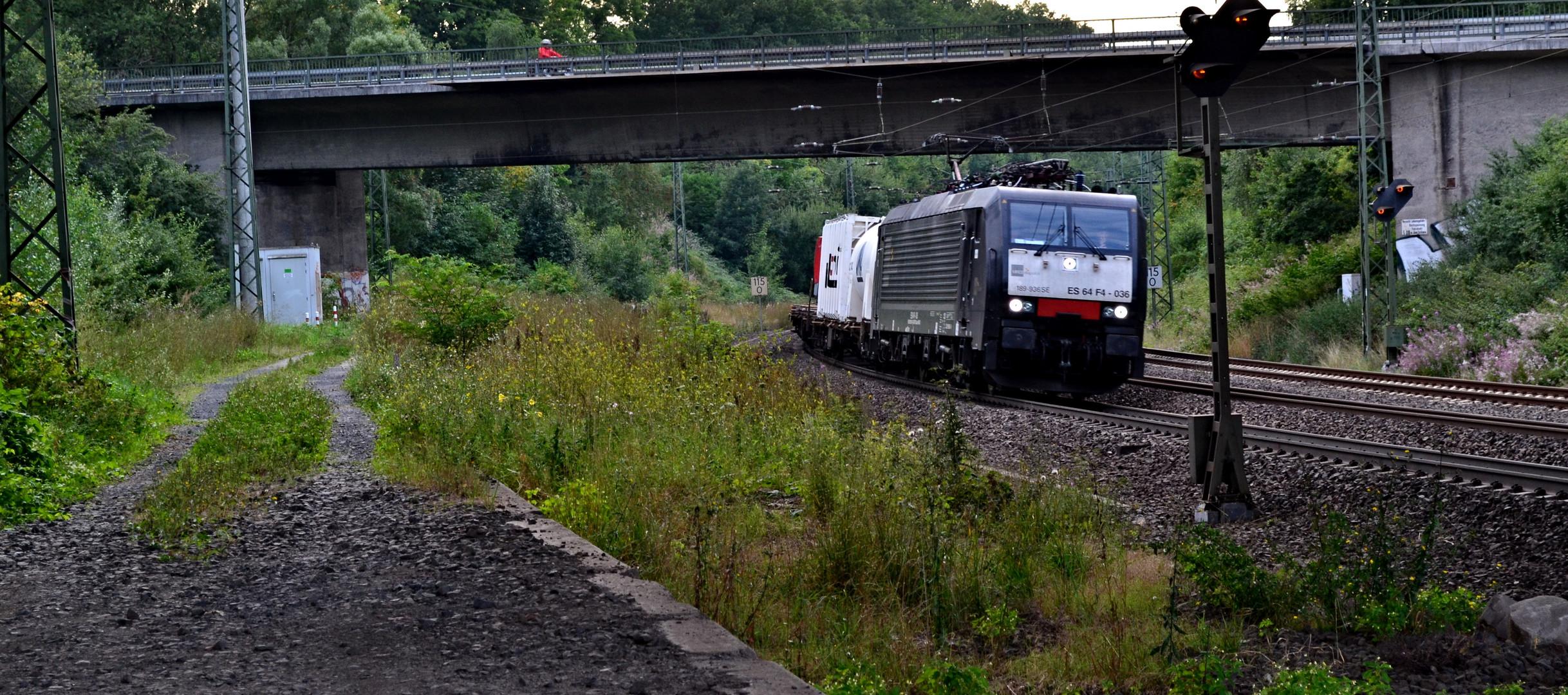 Güterzug auf alter Strecke nach Kassel