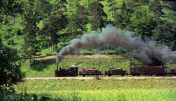 Güterzug bei Agonitz im Steyrtal
