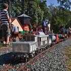 Güterzug mit Krokodil auf der Gartenbahnanlage in Graz!