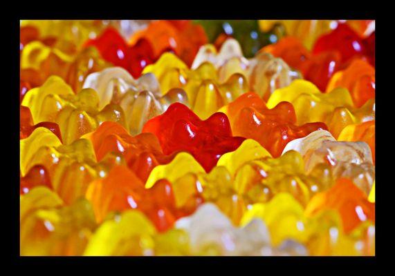 Gummibär Fotos & Bilder auf fotocommunity