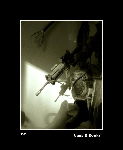 Guns & Books